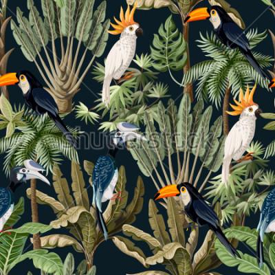 Obraz Bezešvé vzor s exotických stromů a volně žijících ptáků, papoušků a Tukanů.