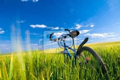 Bike na poli