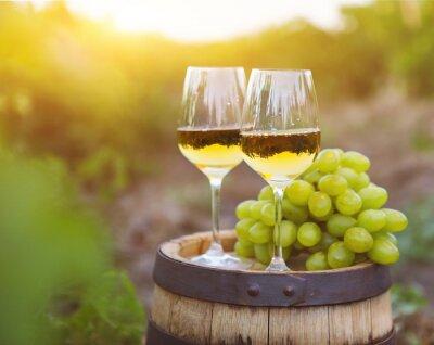 Obraz Bílých hroznů a dvě sklenky bílého vína
