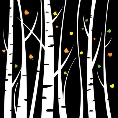 Obraz Birch tři pro vás design