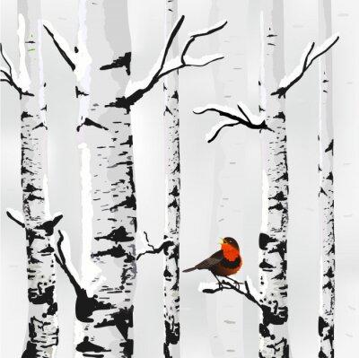 Obraz Birch ve sněhu, zimní karta v vektoru
