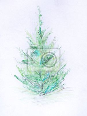 Borovice Kresba Tuzkou Obrazy Na Stenu Obrazy Evergreen Rucni