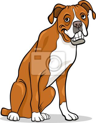 Boxer Cistokrevny Pes Kreslene Ilustrace Obrazy Na Stenu Obrazy