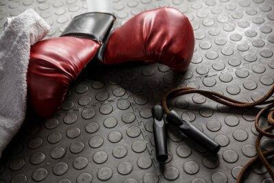 Obraz Boxerské rukavice a lano