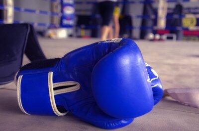 Obraz Boxerské rukavice modré