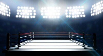 Obraz Boxerský ring V Arena