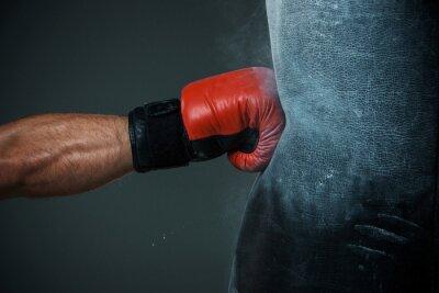 Obraz Boxing školení a boxovací pytel