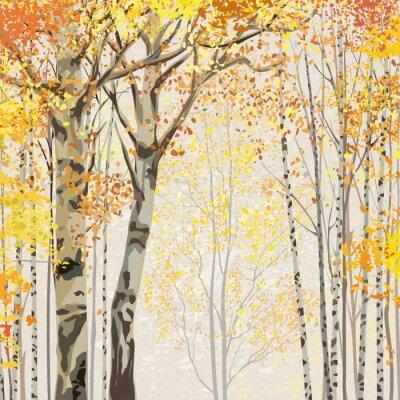 Obraz Březový háj na podzim včas