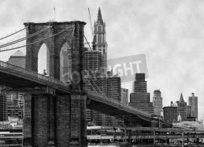 Obraz Brooklyn Bridge New York a řeku East