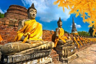 Obraz Buddhovy sochy v Ayutthaya, Thajsko,