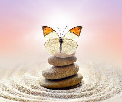 Obraz Butterfly a kameny bilance