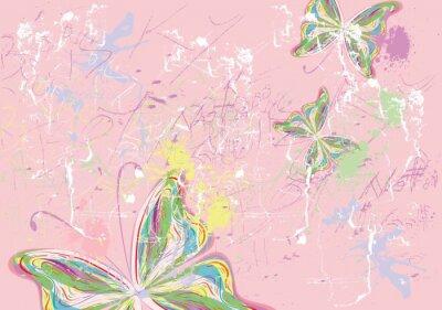 Obraz Butterfly barvy