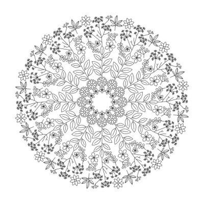 Obraz byliny mandala