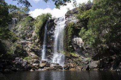 Obraz Cascada grande con Abundante agua en el medio de una Foresta. Cooktown, Queensland, Austrálie
