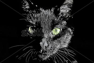Obraz Cat face rastrová černá a bílá realistický ručně kreslený scratchboard styl image