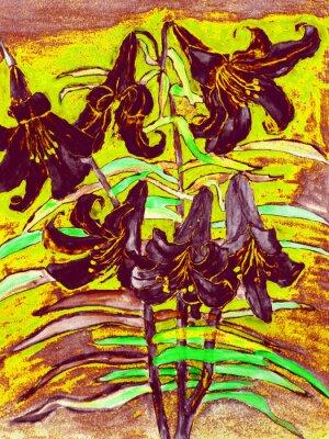 Obraz černé lilie