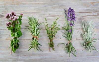 Obraz čerstvé bylinky