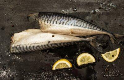 Obraz Čerstvé střih makrely plátky citronu, sůl, pepř na černém pozadí