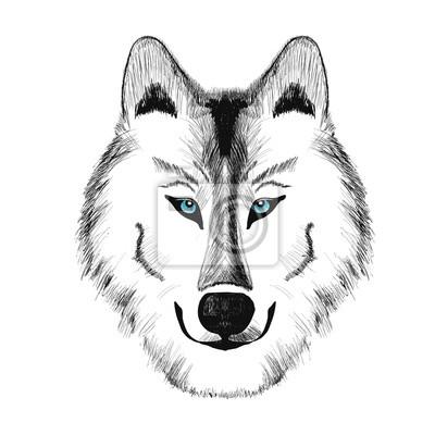 Cesky Vlk Kresleni Obrazy Na Stenu Obrazy Bohemsky Sibirsky Psi