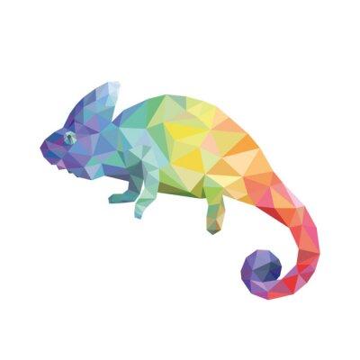 Obraz Chameleon barvy
