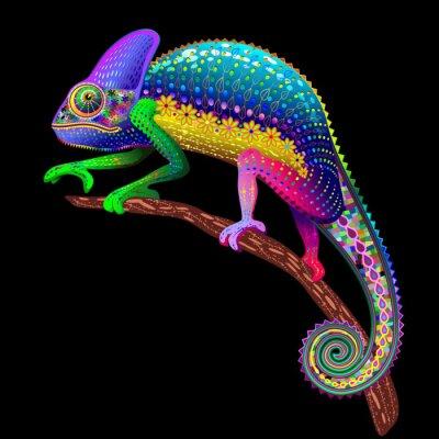 Obraz Chameleon Fantasy barvy duhy