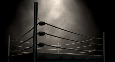 Obraz Classic Vintage boxerský ring