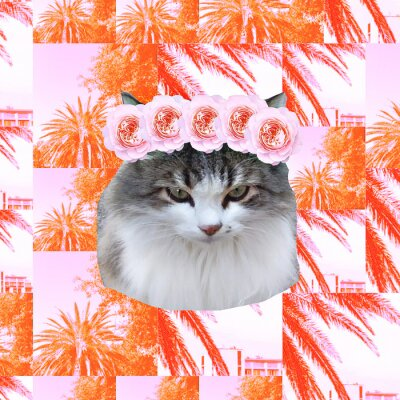Contemporary art collage.  Pretty Kitty tropical princess