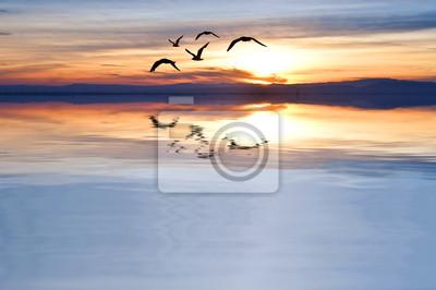 Obraz Cruzando el mar