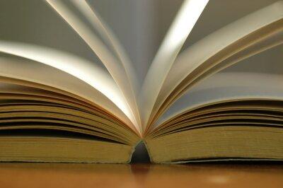 Obraz Detailní otevřel knihu