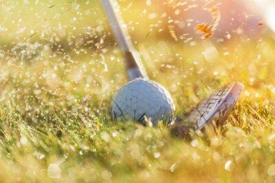 Obraz Detailní záběr na golfový míček.