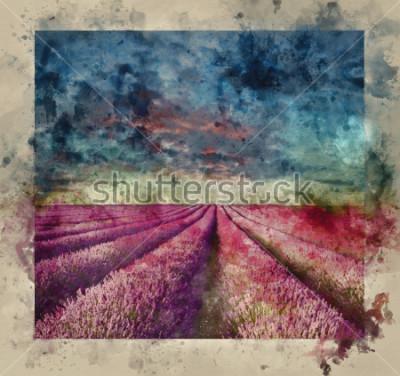 Obraz Digitální akvarel malba ohromující letní západ slunce nad levandule krajiny