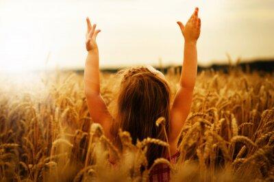 Obraz Dívka na pšenici