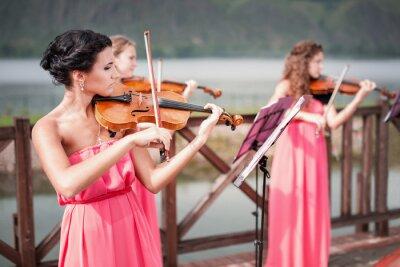 Obraz Dívky hraje na housle