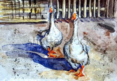 Obraz Domácí husy chodí ve dvoře. Kreslení akvarel na papíře. Naivní umění. Abstraktní umění. Malba akvarel na papíře.