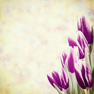 Obraz Dovolená Vintage květinové pozadí