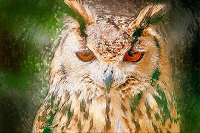 Obraz Drawn Owl Portrait