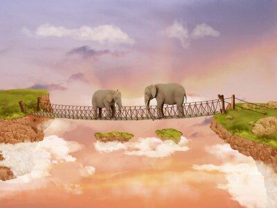 Obraz Dva sloni na most na obloze