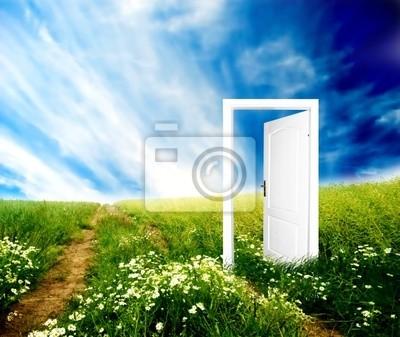 Dveře do nového světa. Barevné, světlý, výborná kvalita.