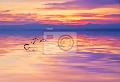 Obraz el mar de barva purpura