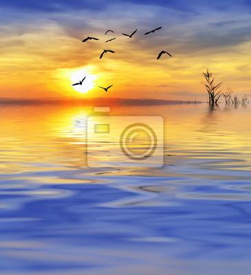 Obraz el ultimo Vuelo sobre el lago