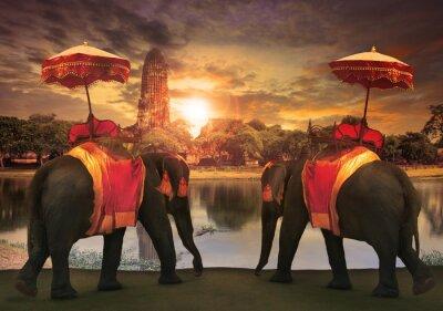 Obraz elephant dressing with thai kingdom tradition accessories standi
