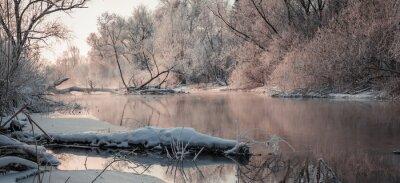 Obraz fantastické zimní krajina