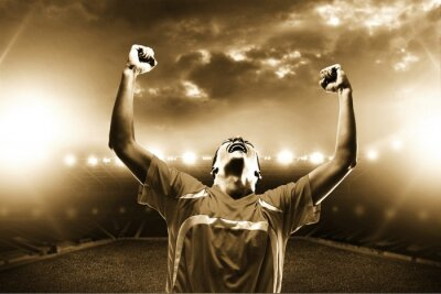 Obraz Fotbal.