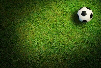 Obraz Fotbalový míč fotbal sport