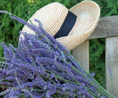 Obraz Fresh Cut Lavender s výhledem do zahrady Hat