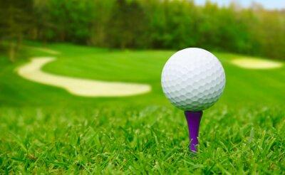 Obraz Golfový míček na hřiště