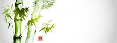 Obraz Green bamboo trees on white background. Traditional Japanese ink wash painting sumi-e.  Hieroglyph- eternity