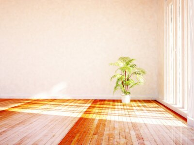 green plant in the room, 3d