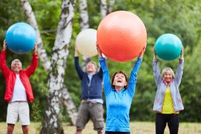 Obraz Group of seniors exercises with gym ball