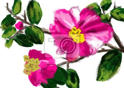 hand draw květina